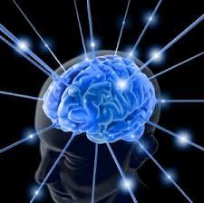 Neurolog kuren?