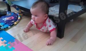 Rose er gået under bordet